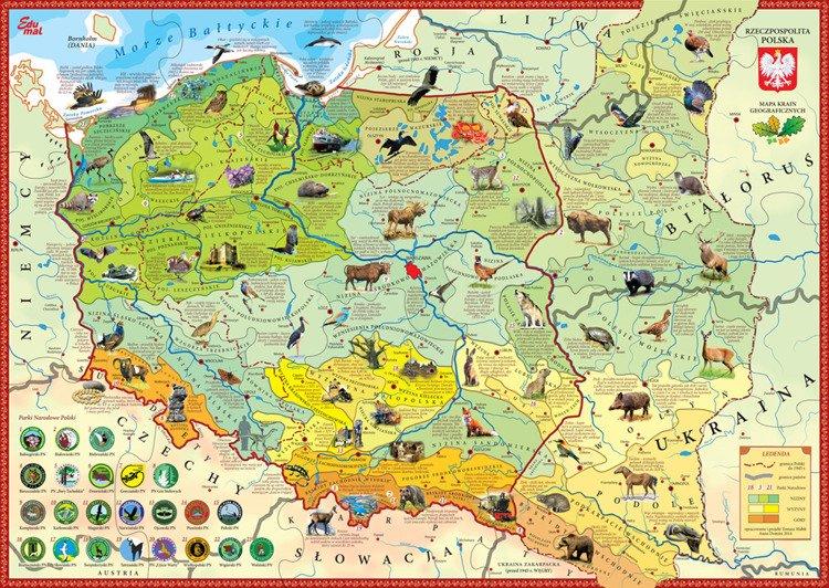 Puzzle Edukacyjne Krainy Polski Edumal Kolekcje Geografia Dla