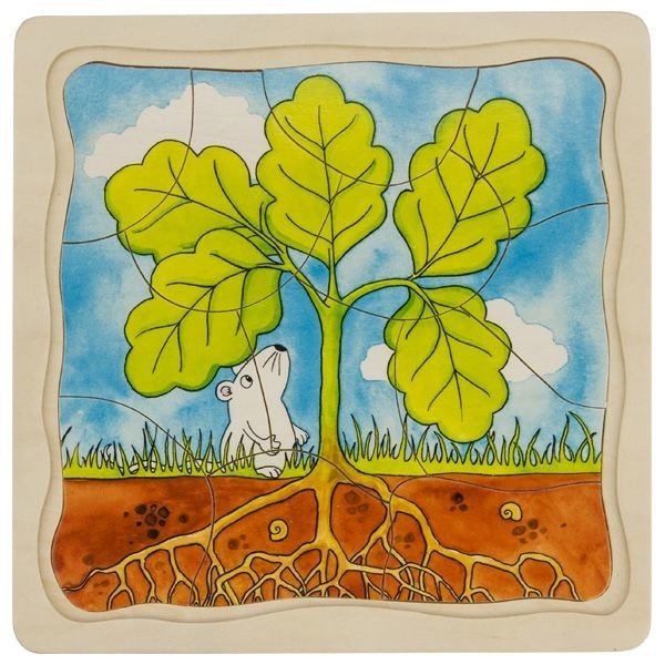 Puzzle warstwowe - jak rośnie drzewo